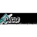 The Washington Consulting Group Inc logo