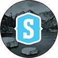 Stevinson Automotive logo