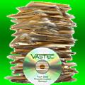 VASTEC Inc logo