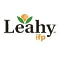 Leahy-IFP logo