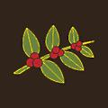 Heine Brothers' logo