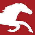MaverickLabel.com logo