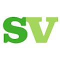Synergy Vision logo