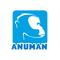 Anuman Interactive logo
