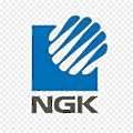 NGK Insulators