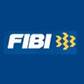 FIBI Holdings logo