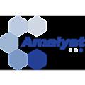 Amalyst logo