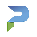 Parsons Government Services logo
