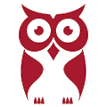 CyberOwl logo