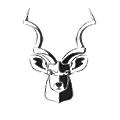 Kudu Dynamics