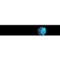 SSenStone logo
