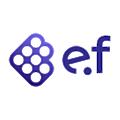 E Fundamentals logo