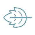 Peppermint Innovation logo