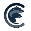 Cerberus Trading Solutions logo