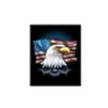 SCC Eagle logo