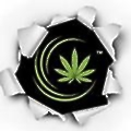 Integrated Cannabis Solutions logo