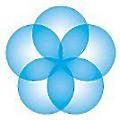 Kalos Therapeutics logo
