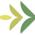 SeedForward logo