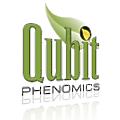 Qubit Phenomics logo