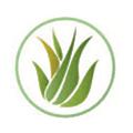 Real Aloe logo