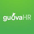 GuavaHR logo