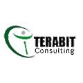 Terabit Consulting
