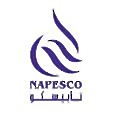 National Petroleum Services Company (NAPESCO) logo
