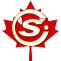 Catastrophe Solutions International (CSI) logo