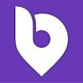 Bidvine logo