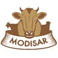 Modisar logo