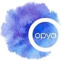 Optimus Outcome logo