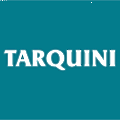 Molinos Tarquini logo