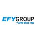 Efy logo
