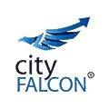 CityFalcon logo