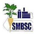 SMBSC logo