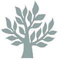 Timber Windows logo